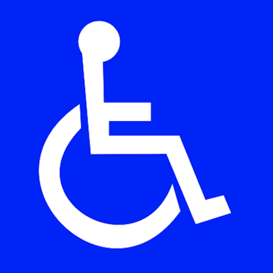 Image result for handicap icon